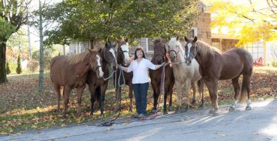 Helen and her horses