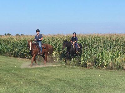 Riding through a cornfield