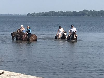 horses with riders in water